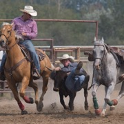 The Spy Hill Sports Days and Rodeo was held August 11-12 and featured CCA rodeo events both days followed by chariot and chuckwagon races.