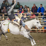 Dodge City Days Rodeo - October 6 & 7, 2017 - Wapella, SK