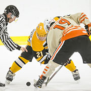 The Rocanville Tigers tied the THL final series 1-1 last week after pulling off an 8-7 win over the Theodore Buffalos on Tuesday, March 20, 2018 in Rocanville.
