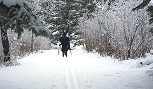 Rocanville cross-country trails are open this winter